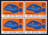 1996 Cocos (Keeling) Islands Humphead Wrasse SG338 Block of 4 MUH Mint Stamps