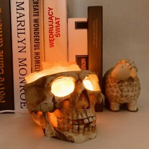 Skull Crystal Salt Lamp USB Dimmable Night Light Natural Stone Salt Bedside Lamp