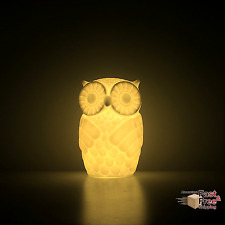 Owl Table Lamp Home Decor Night Light with Timer, Warm White, Battery Powered