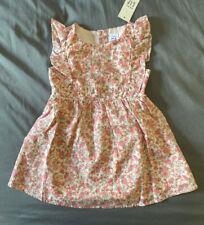 Toddler Girl 18-24 Month Baby Gap Pink Floral Fruit Sleeveless Ruffle Dress