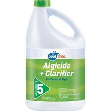 Pool Algaecide Clarifier 128 oz. Control Algae Clear Cloudy Water 2in1 Algicide