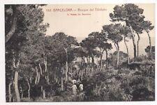 barcelona , bosque del tibidabo