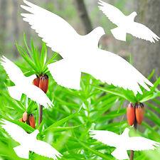 set shadow birds white die cut Window glass Protection vinyl decals stickers