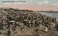 Venice, CA - View of Crowded Beach and Shoreline