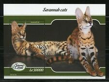 Sierra Leone 2019 Savannah Cats Souvenir Sheet Mint Never Hinged