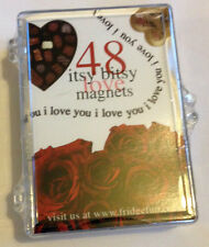 48 Itsy Bitsy Love Magnets - Perfect for Valentines - I Love You Fridge Magnets