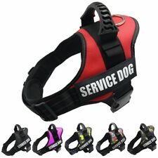 Reflective Adjustable Padded Dog Harnesses Breathable Solid Basic Halter Harness