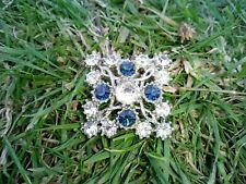 Clear And Blue Set Brooch
