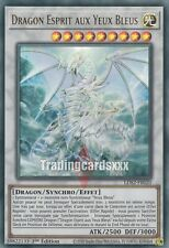 Yu-Gi-Oh!Dragon Esprit aux Yeux Bleus : UR LDS2-FR020