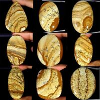 Natural  Picture Jasper Oval Pear Cushion Cabochon Loose Gemstone Collection
