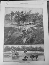 1892 USA FLORIDE CHASSE MARAIS CERF CHEVAL CARABINE CHIEN