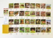 Ancien jeu de Cartes - 7 Familles - Animal Wold - Top Quartets - Serie 1