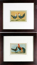 Antique Print C.1800s, Hand Colored Lithograph,Framed Showing a Pair of Poultry