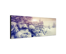 120x40cm Wintertraum Panorama Schnee Landschaft Frost Leinwand Bild Sinus Art