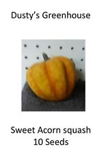 sweet Acorn winter squash Organic heirloom Non-GMO 10 count  seeds