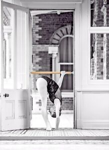 The Demi Barre / A singular ballet barre that fits in your door way!