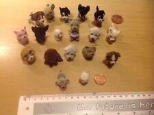 Eighteen Model Dogs