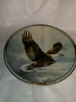 Rise Above The Storm And You Will Find The Sunshine Eagle Plate