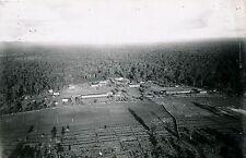 INDOCHINE c. 1930 - Bandon Exploitation de la Forêt Vierge  - Div 3930