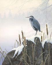 """Morning Solitude"" Stephen Lyman Anniversary Canvas - Great Blue Heron"