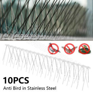 5 METRE PROFESSIONAL DETERRENT PIGEON/SEAGULL ANTI BIRD SPIKES FOR WIDE LEDGES