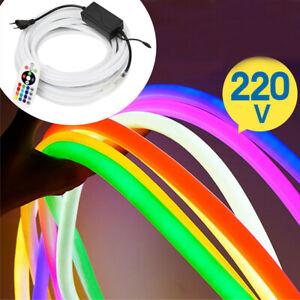 10m LED Neon Streifen Flex Lichtband Lichtschlauch Wasserdicht Mit Fernbedienung