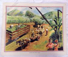 Poster Vintage escuelas de carga de azúcar canes en Jamaica - 1920s/1930s
