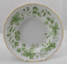 Villeroy & and Boch PARKLAND GREEN rimmed soup / dessert bowl 23cm NEW NWL 1st