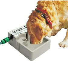 Pet Water Drinking Bowl Continuous Automatic Refill Fountain Dog Cat Bird Rabbit