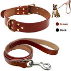 Genuine Leather Dog Collar and Leash Set Heavy Duty for Small Medium Large Dogs