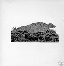 1928 Unusual woodcut Pangolin Bizarre mammal