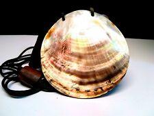 Abalone Paua Shell Statement Necklace