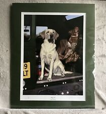 More details for limited edition labrador print