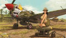 P-40n Warhawk-eduart-Limited Edition - 1:32 - Eduard 11104