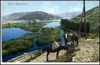 Šibenik Kroatien Croatia Postkarte um 1920/30 Panorama Blick ins Tal Maultiere