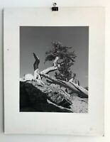 Carl Brandauer Photograph Black and White Landscape 1971 Boulder Colorado