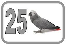 House Door Number Sign African Grey Parrot Design Metal Door Sign