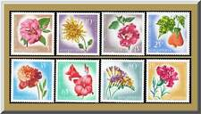 1967 ALBANIA FLOWERS CAMELLIA CHRYSANTHEMUM FREESIA ABUTILON STRIATU SCT.1017-50
