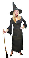 Adult Women Deluxe Wicked Witch Costume Set One Size Dress Up Halloween Party