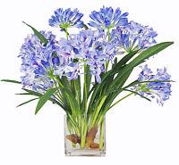 FLOWER ARRANGEMENTS - BLUE AGAPANTHUS WATER FLORAL - SILK FLORAL ARRANGEMENT