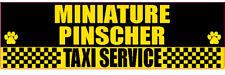 Miniature Pinscher Taxi Service Dog Sticker