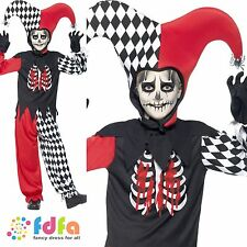 CRAZY CIRCUS CLOWN JESTER HALLOWEEN - Age 13+ - child boys fancy dress costume