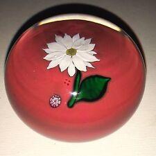 Saint Louis White Flower on Orange Base Art Glass Paperweight
