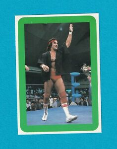 Ricky Steamboat (Frame / Green) 1982 Monthly professional wrestling BBM card