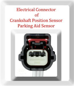 Connector of Crankshaft Position Sensor / Park Assistance Sensor Fits:GM 06-19