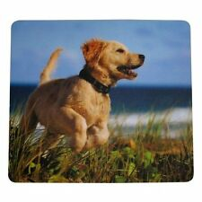 Fellowes 5pc Lot Mouse Pad  9-Inches x 8-Inches  Puppy Golden Retriever Print