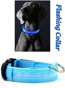 USB Rechargeable LED Dog Night Safety Flashing Collar Anti-Lost Adjustable New