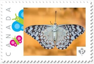 BUTTERFLY ON GLASS Personalized Postage stamp MNH Canada 2018 p18-06sn19