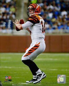 Andy Dalton Cincinnati Bengals NFL Licensed Unsigned Glossy 8x10 Photo D