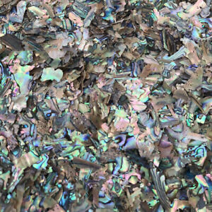 1.76oz 50g Abalone Shell scrap Inlay craft Leftovers flakes Luthier manicure